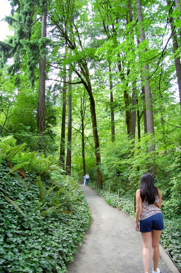 Erin walking through Fern Gully.